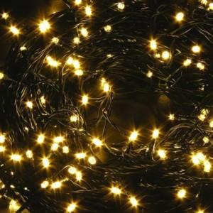Σειρά με 100 Λαμπάκια Χριστουγέννων Επεκτεινόμενα Πράσινο Καλώδιο/Θερμό Χρώμα 7μέτρα IP20 220-240V OEM 800480