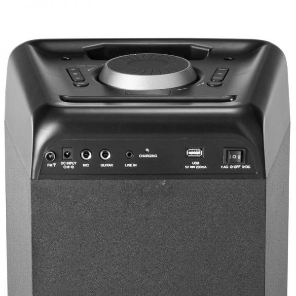 TWS για σύνδεση με δεύτερο και υποδοχή για μικρόφωνο και όργανο – 100 W RMS